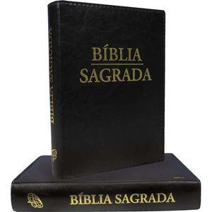 BÍBLIA NOVA TRADUÇÃO GRANDE